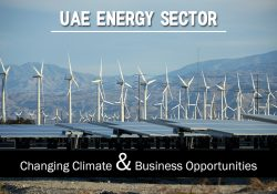UAE Energy Sector