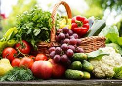 Sector agricultura y alimentación