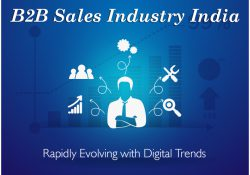 B2B sales Industry India