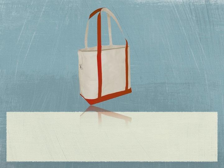 Organic Canvas Small Boat Bag