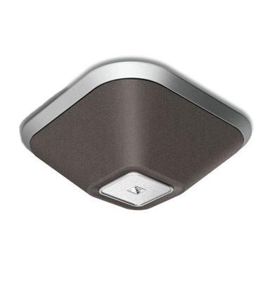Ceiling Speaker - LUCID speaker