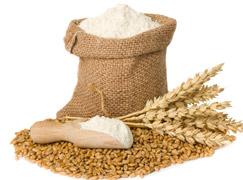 enzimático en el sector alimentario
