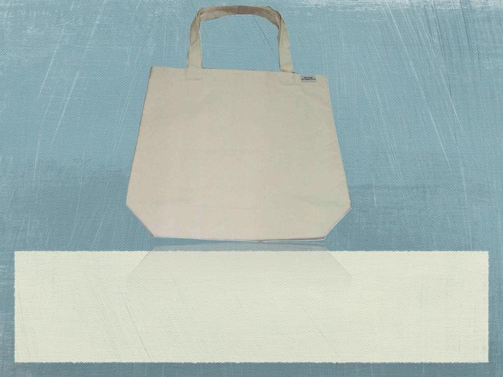Organic Canvas Document Holder Bag