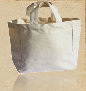 Recycled Organic Canvas Cosmetic Handbag