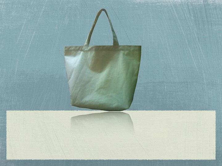 Organic Canvas Boat Bag