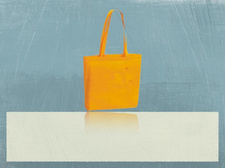 Organic Canvas Calico Bag