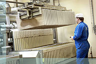 DSI - Automatic Blockhandling for vertical plate freezers