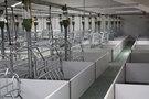 Resistencias eléctricas calefactoras en paneles para la cría y cuidado de animales