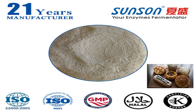 Amylase for food enzyme Sunson SBE-03FA
