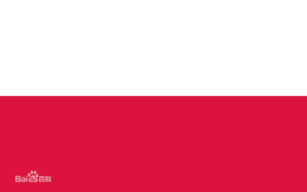 波兰求购液压橡胶管