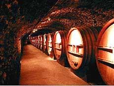 Dégustation de vins du sud de la France