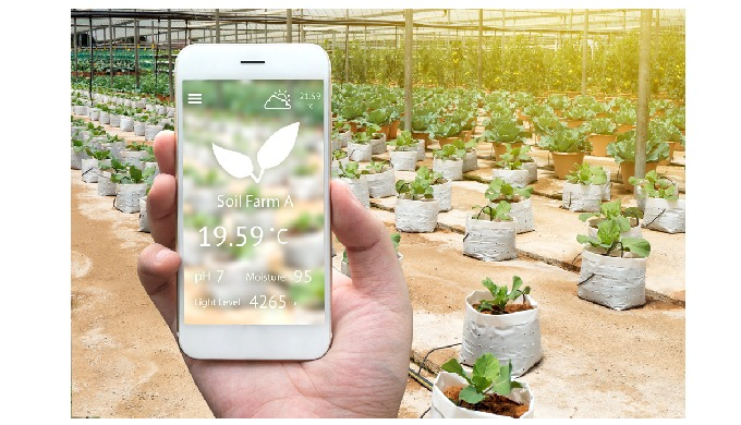 How Does the Digital Transformation in Agriculture Occur?