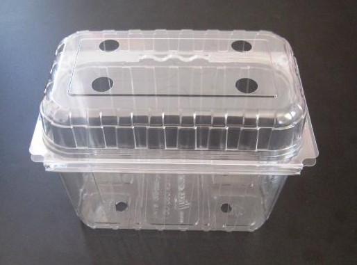 Caserole alimentare din plastic PET.