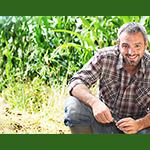 Vers la fécondation intelligenteOCP est un acteur majeur sur le marché mondial de l'agriculture.Sa mission principale e