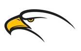 Fiber Eagle, S.L.