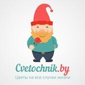 Цветочник. Интернет-магазин CVETOCHNIK.BY