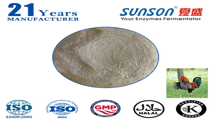 Introduction: Nutrizyme® XY (xylanase) [EC 3.2.1.8] is made from Trichoderma reesei through fermentation and extraction