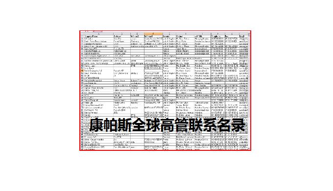 康帕斯全球高管联系名录包含全球主要的 2145122 位B2B企业高管联系名录,他们按职能分布如下:  职能 企业数量(家) CEO 299494 副总裁 200129 COO 900856 副COO