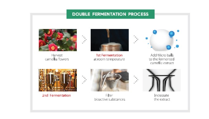 Why Nsuus Double-Fermentation?