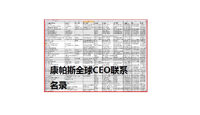 全球CEO联系名录包含全球主要的 299494 位B2B企业 CEO 联系名录。每位 CEO 信息大概包含姓名、称谓(女士、先生、博士)、职务、许可的公司邮箱/电话/传真、所管控公司的名称、详细地址、邮编、业务范围,有的还包含:成立年代、雇
