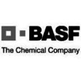 BASF Foreign Ltd.