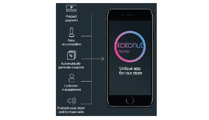 big stores can use good IT systems for customers. Marketing, advertising, membership serivce and mobile prepaid system a