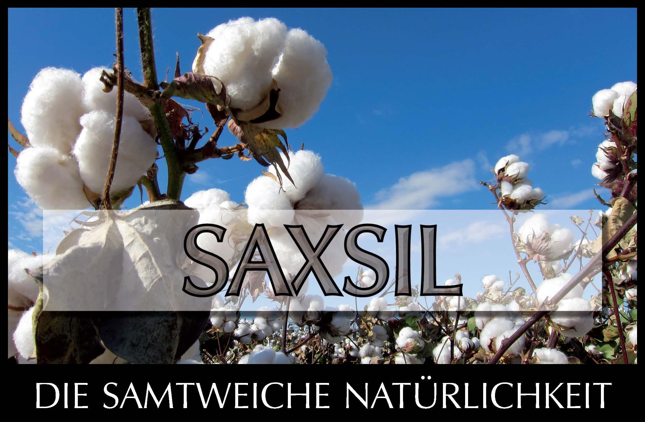 Saxsil  -  Innensiliconharzfarbe