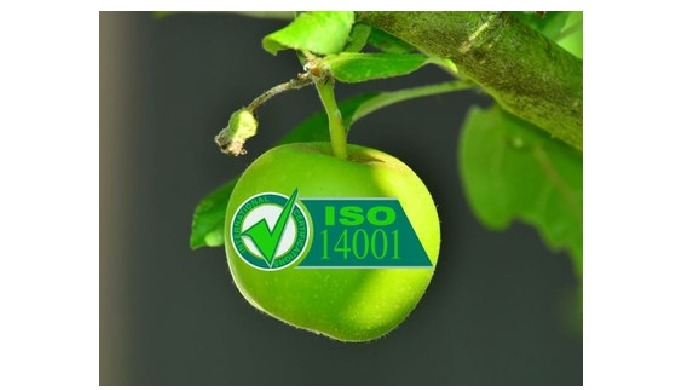 Elay Asia: We got it! The ISO14001 certificate is ours!