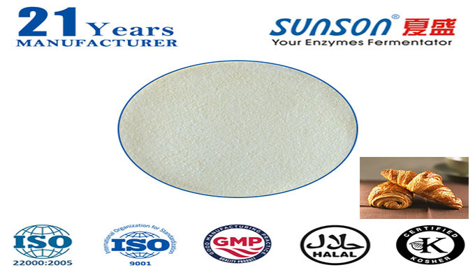 Introduction: Sunson® SBE-01X is a xylanase which made from the best strain of Bacillus subtilis. It is a kind of purifi