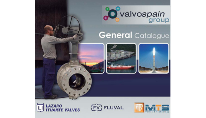 FLUVAL belongs to VALVOSPAIN group and provides a complete range of valves according to API, ASME, BS, ANSI and other st