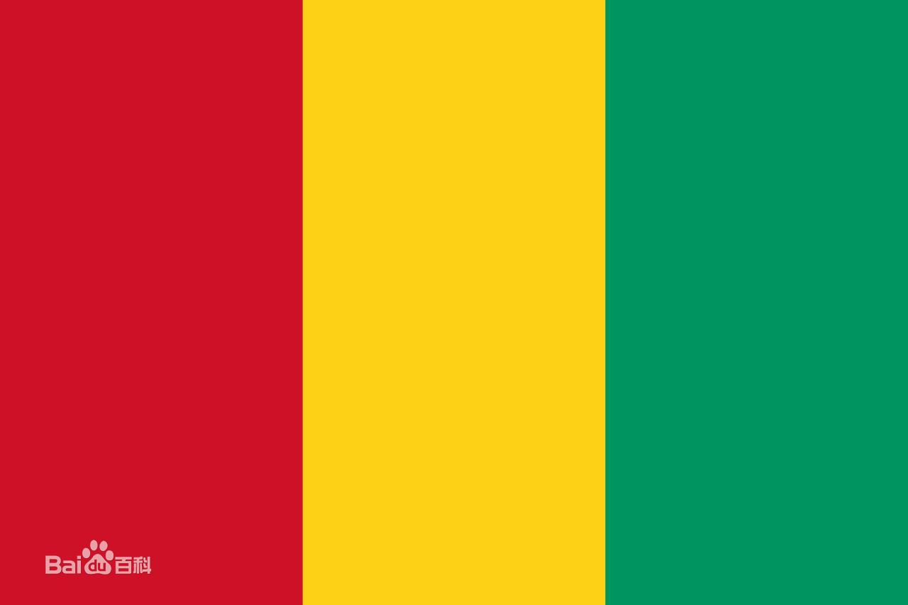 几内亚边境公路国际公开招标