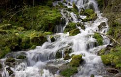 Las cada vez más estrictas normativas protectoras del medio ambiente exigen de las industrias un permanente y continuo e