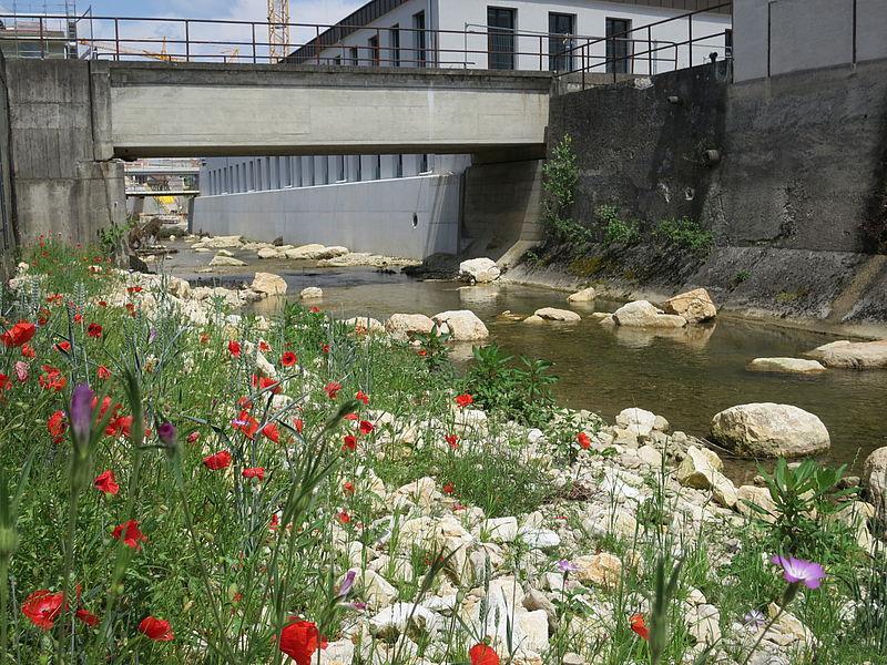 Revitalisierung der Lüssel in Breitenbach