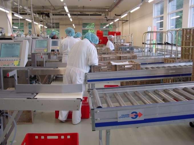 Behälterfördertechnik / Fördersysteme für Behälter, Stückgut, Karton und Gebinde
