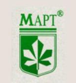 MAPT Ltd (IM Moldo-Ucraineana)