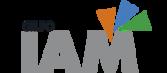 GRUPO IAM: Industria Auxiliar De Matricería, S.A., IAM, S.A