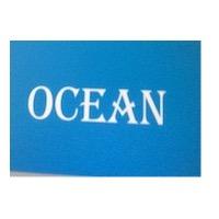 OCEAN DANIŞMANLIK İÇ VE DIŞ TİCARET ANONİM ŞİRKETİ, OCEAN