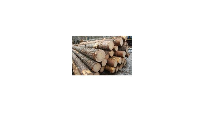 Экспорт лесоматериалов
