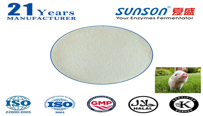 Introduction: Nutrizyme®SFC-061 is a complex enzyme through liquid fermentation and extraction technology. It was formu