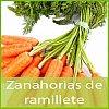 ZANAHORIA EN RAMILLETE La campaña de zanahorias de ramilletes empieza en el mes de noviembre y termina a finales de mayo